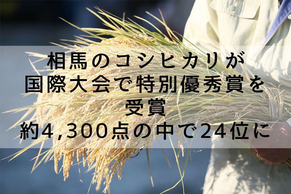 相馬市今田の米農家・佐藤徹広さんのコシヒカリが国際大会で特別優秀賞を受賞