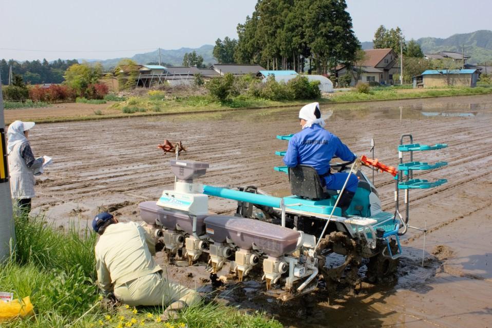 佐藤徹広さんの直播による田植え。相馬では珍しい手法