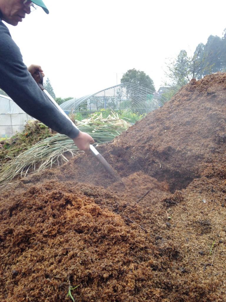 佐藤徹広さんの田植え。種もみの発芽のために、発酵の熱を利用している