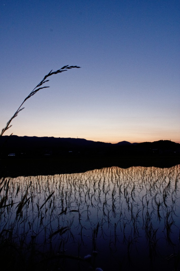 福島県相馬市の田園風景